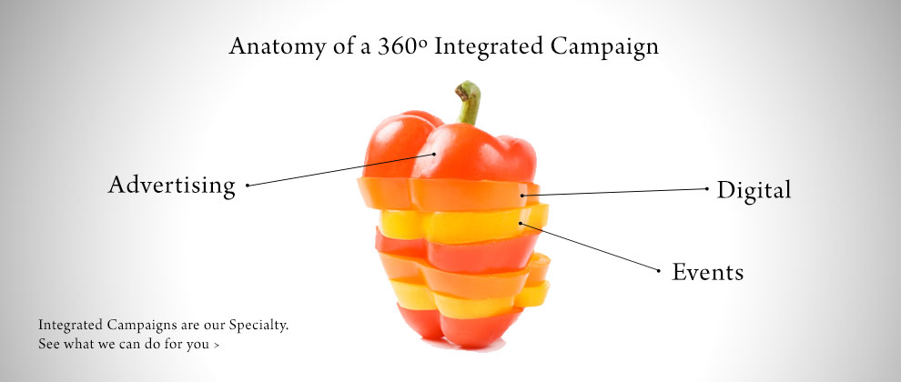 anatomy-of-a-campaign